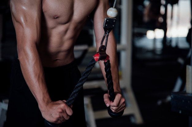 Suspension Trainers – We Review the Best Rated Equipment and Our Top Picks!